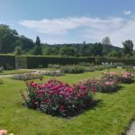 ドイツのバラ園、グナー庭園。ヴェルサイユ宮殿のような贅沢なバラ園はいかが?